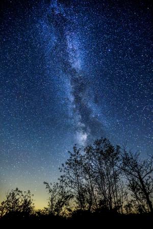 Toronto day trips   Star gazing in Torrance Barrens Muskoka