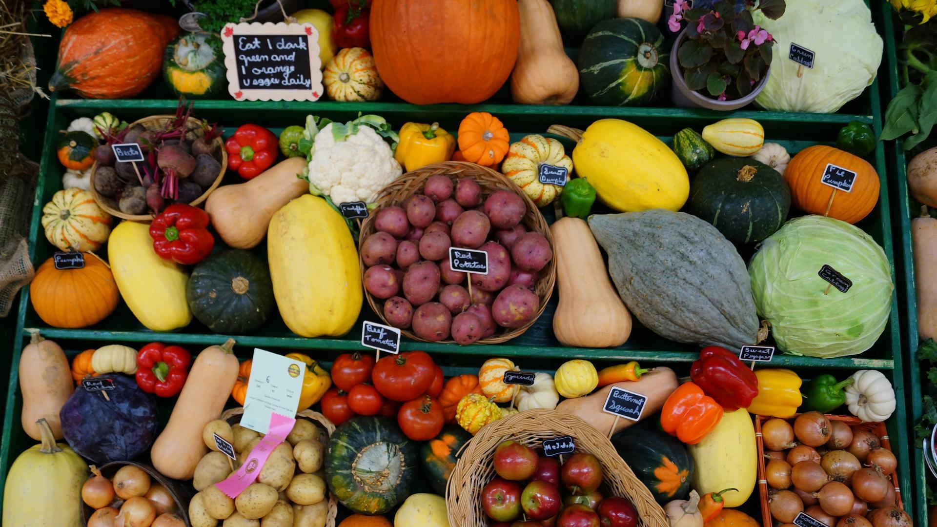Norfolk County farmers market