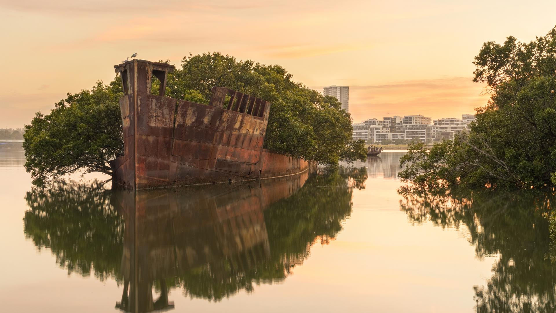 SS Ayrfield shipwreck in Homebush Bay, Australia