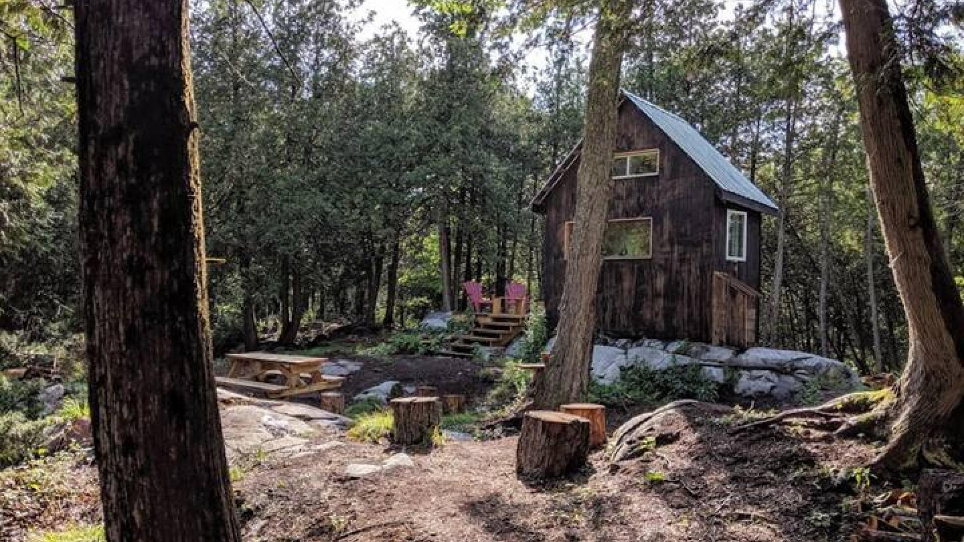 Ontario's coolest cabins to rent | Black Bird Cabin