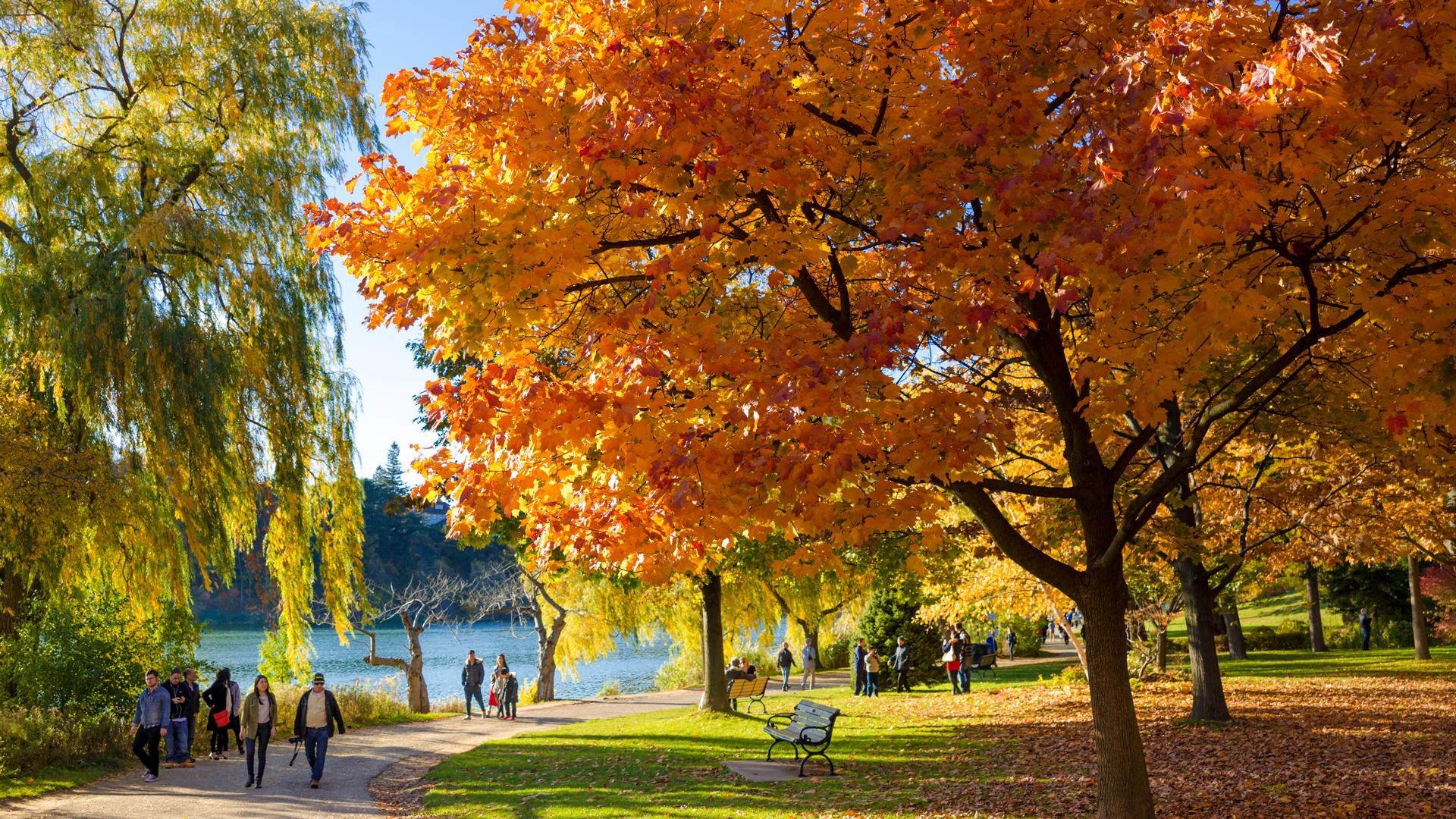 The best walking trails in Toronto | High Park