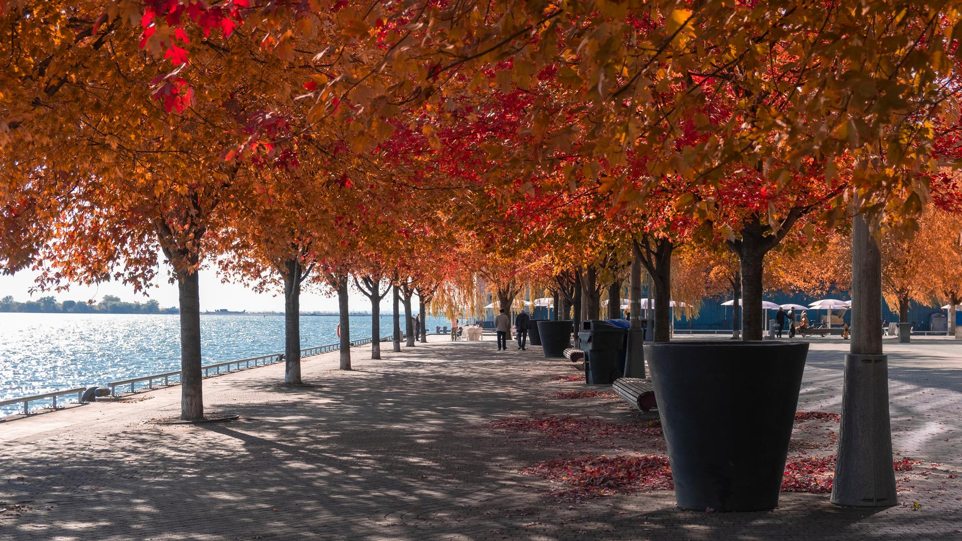 The best walking trails in Toronto | Harbourfront