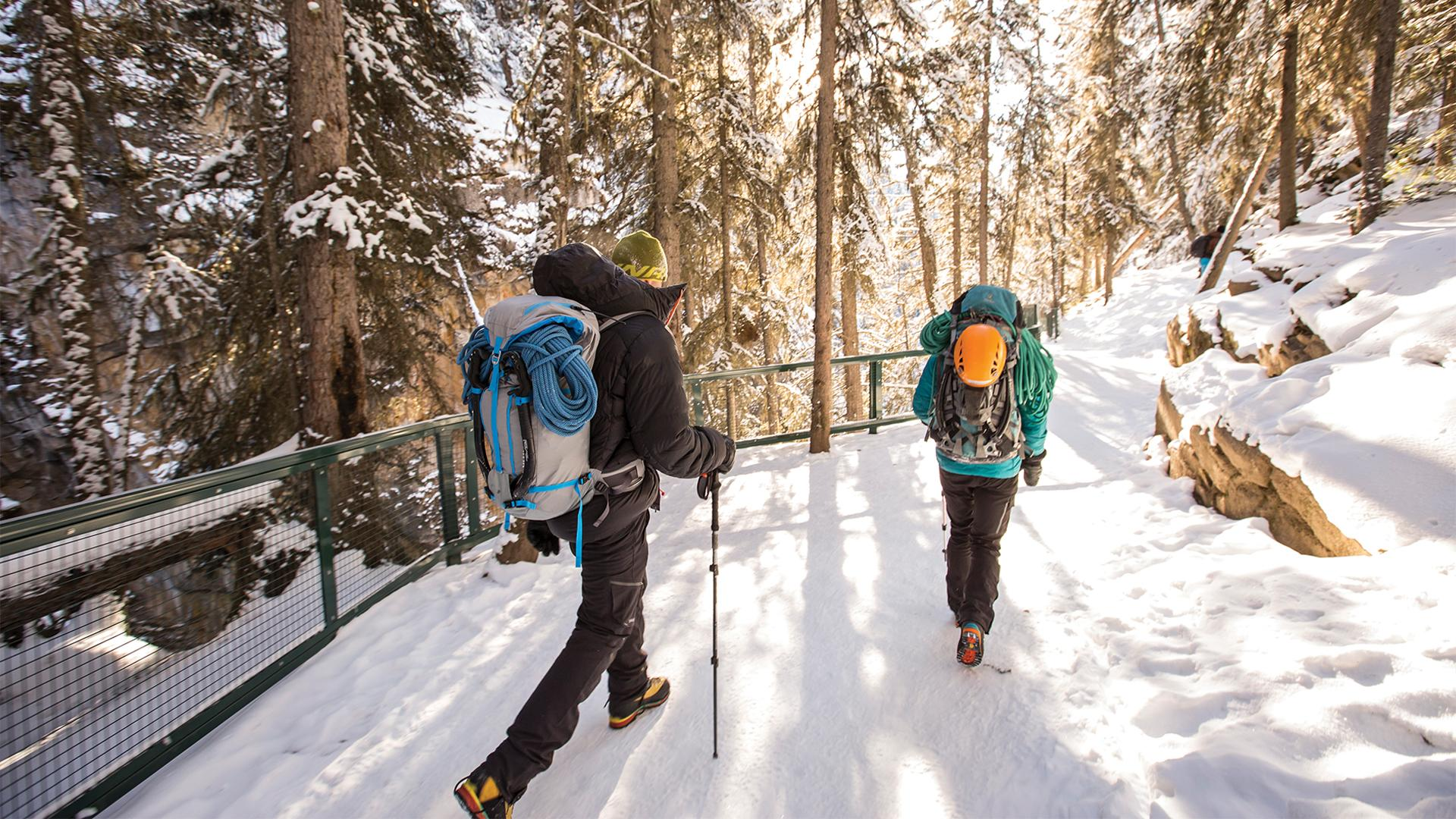 Best things to do in Banff right now | Hikers in Johnston Canyon