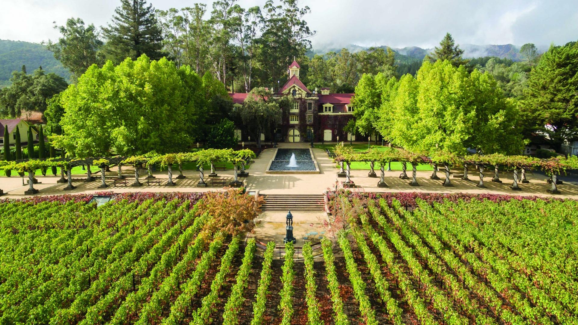 napa-valley-wine-guide
