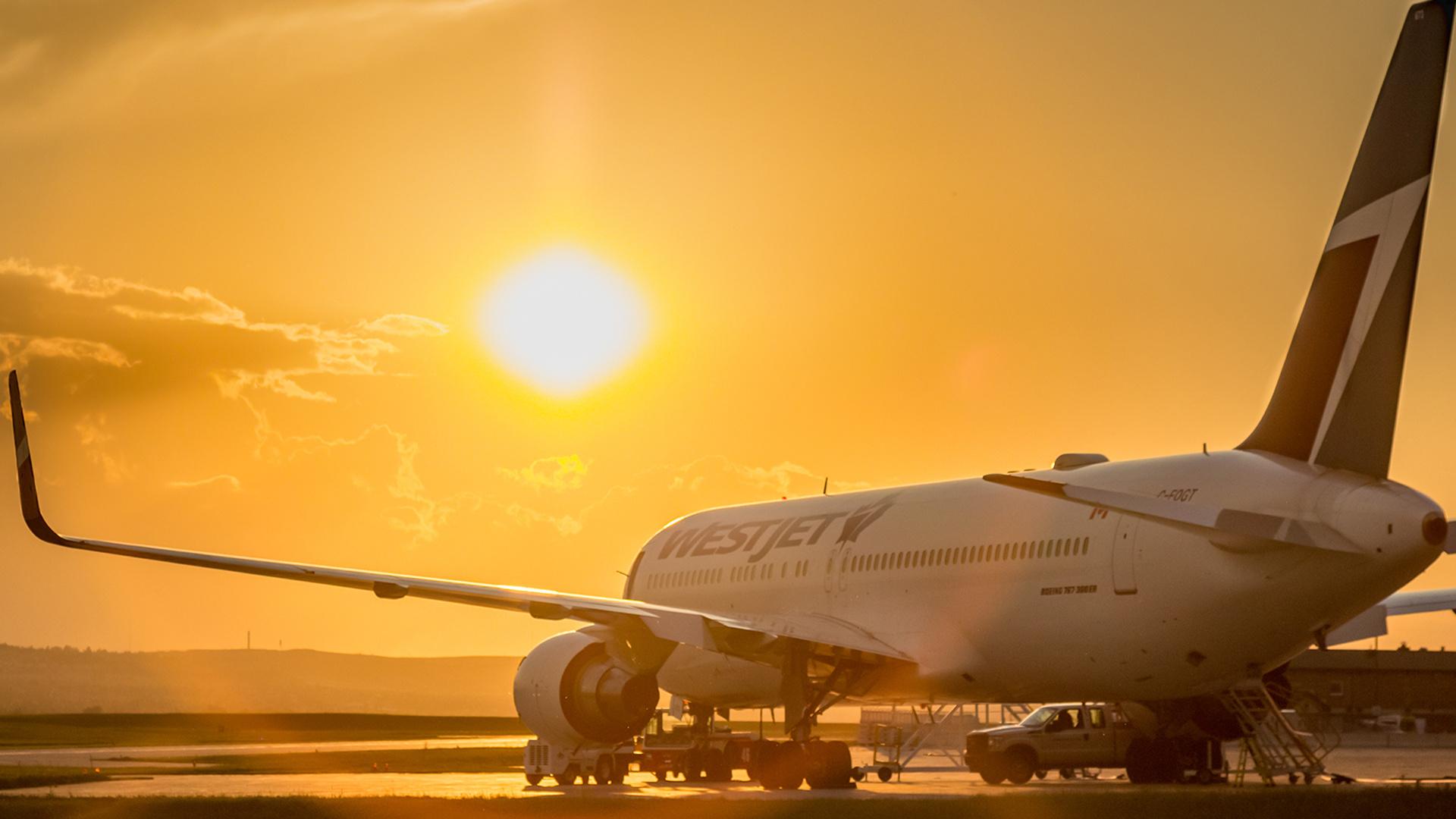 WestJest suspends international flights