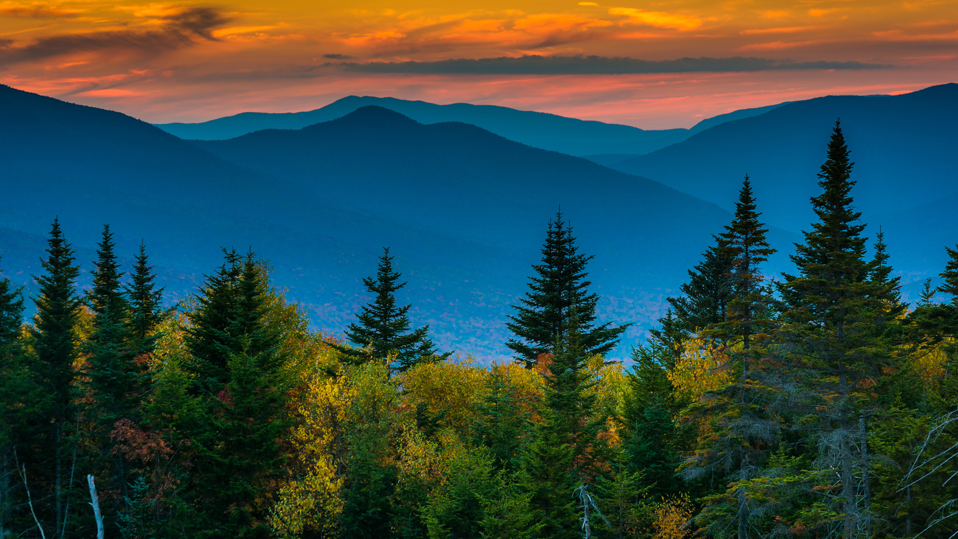 New Hampshire restaurants and activities | The White Mountains looming in the distance behind the trees