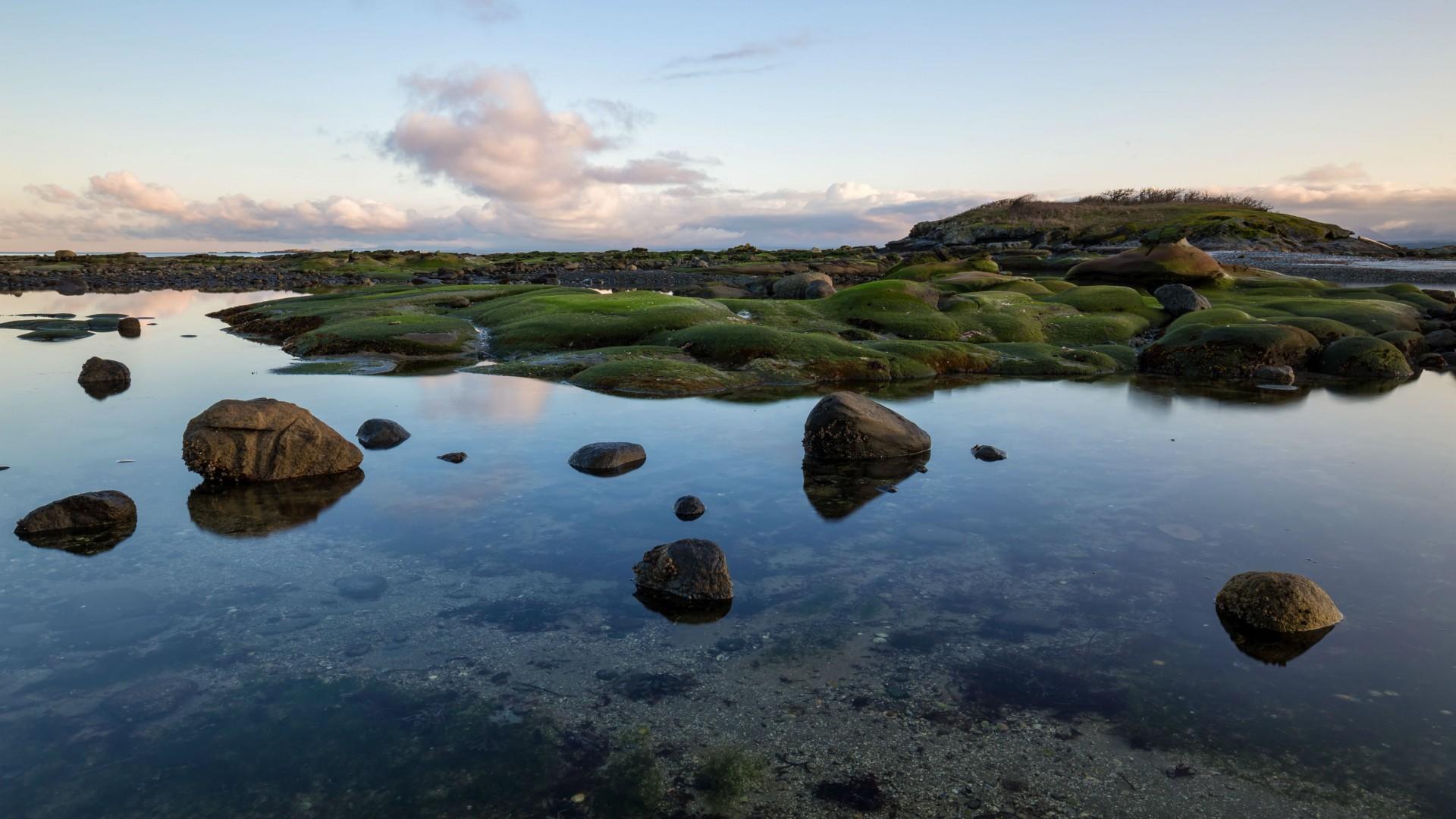 Unplug and unwind on Horby Island