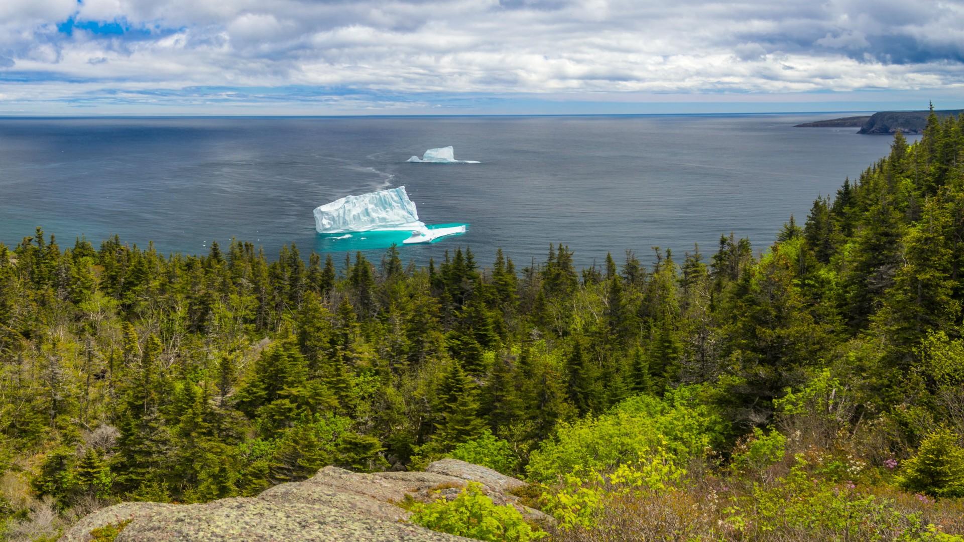 See icebergs along the Newfoundland coast