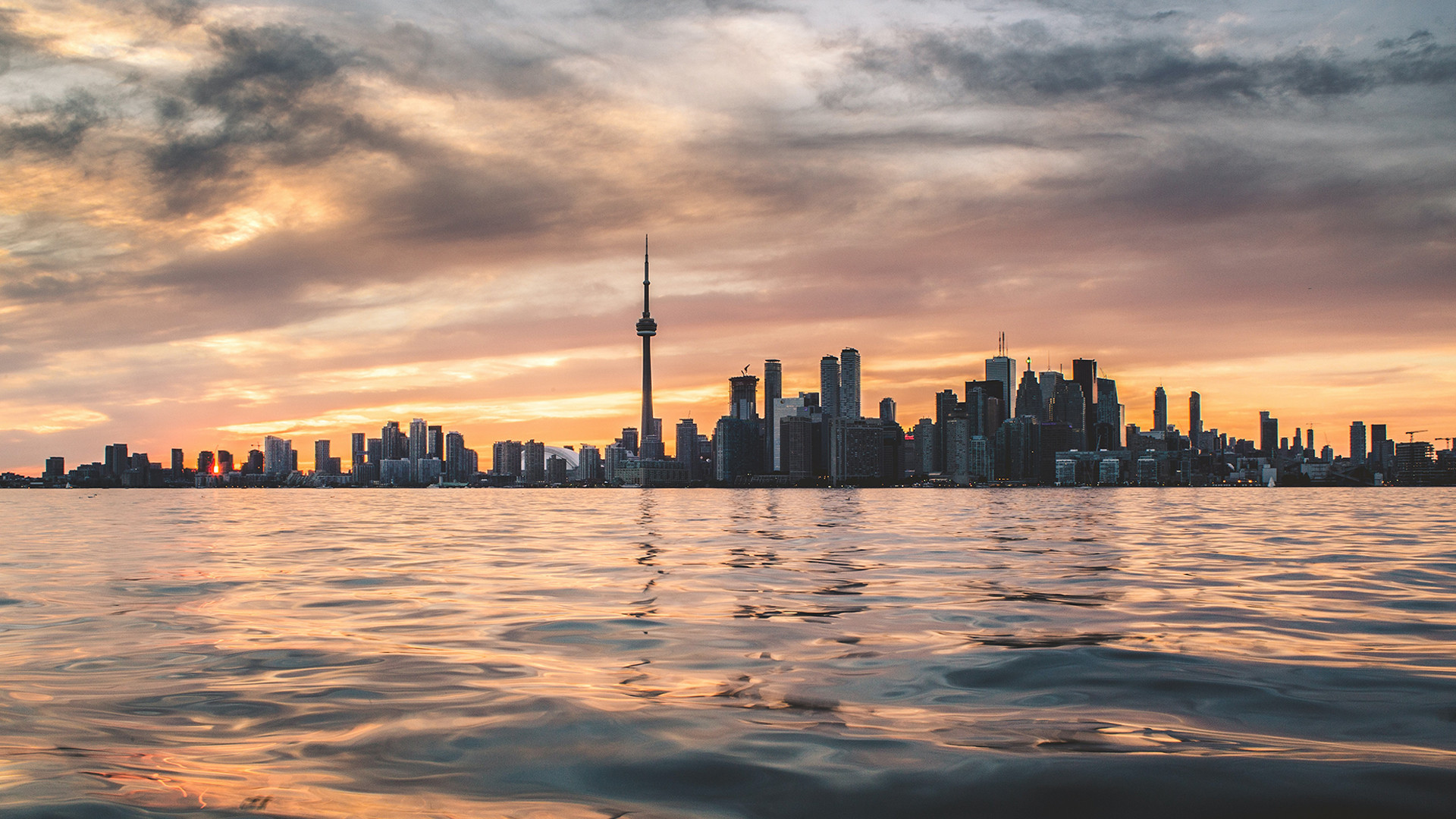 Things to do in Toronto in quarantine