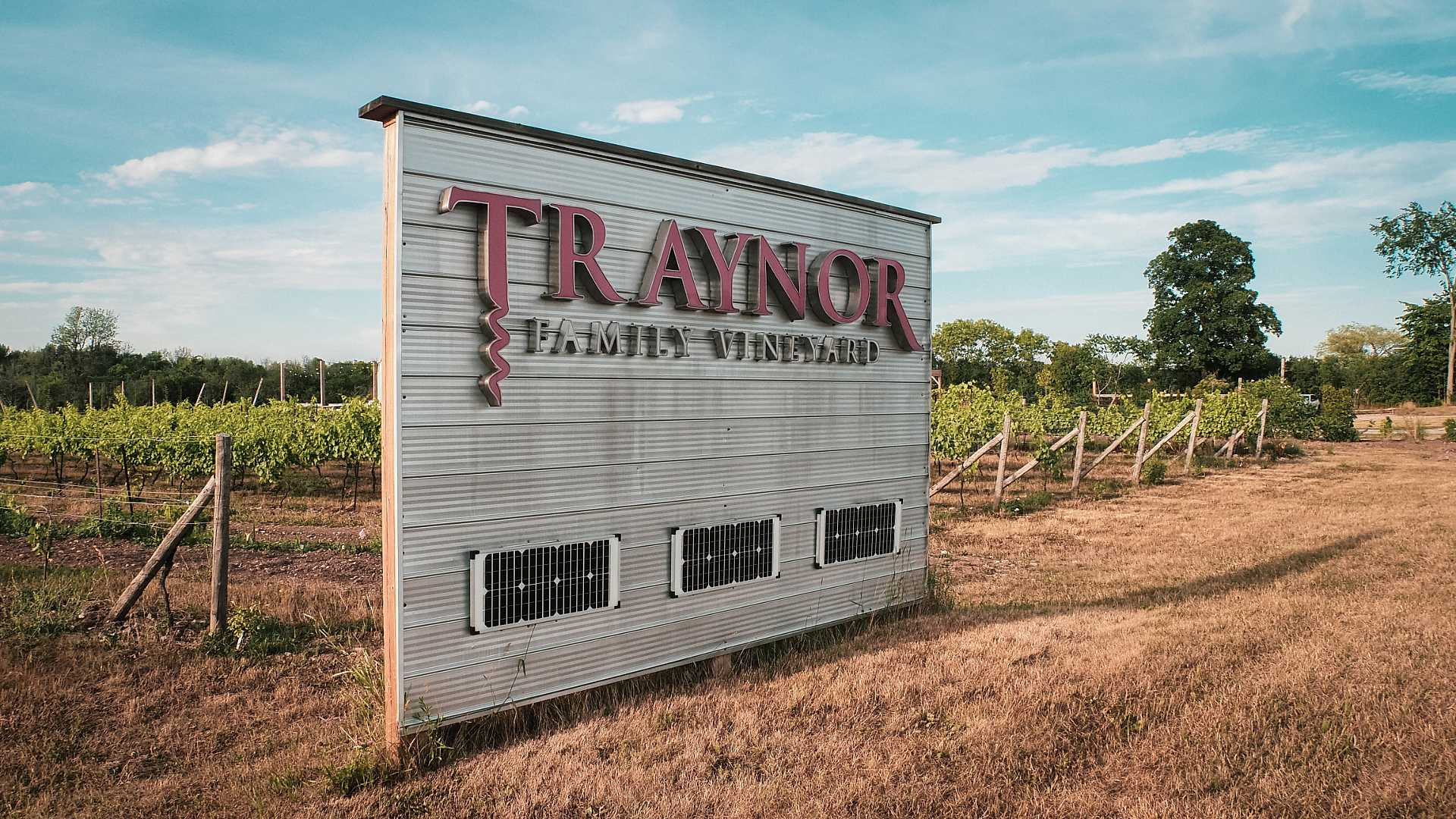 Best Prince Edward Wineries | Traynor Family Vineyards