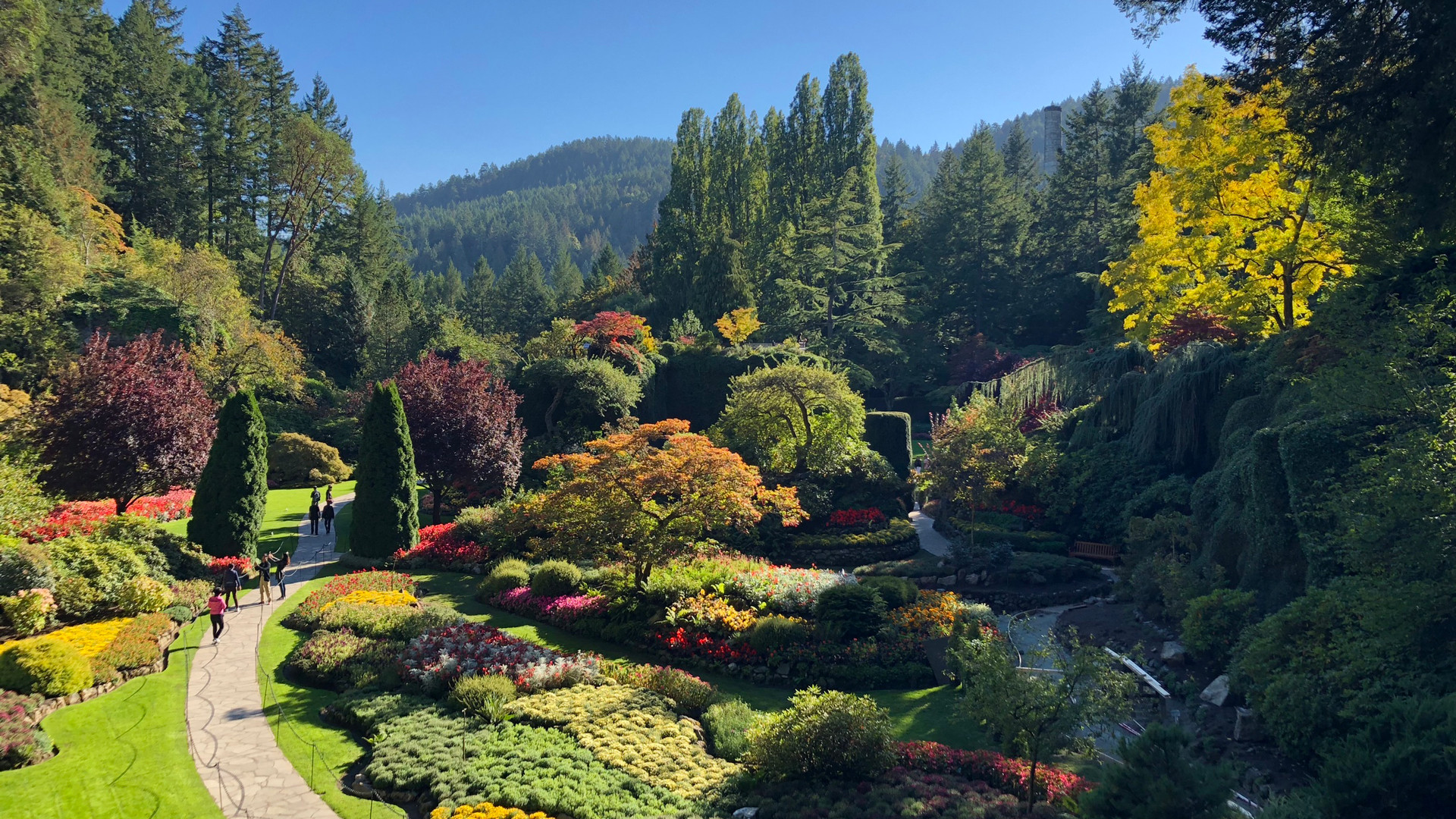 Restaurants in Victoria, B.C. plus hotels, activities and more | Flora at Butchart Gardens