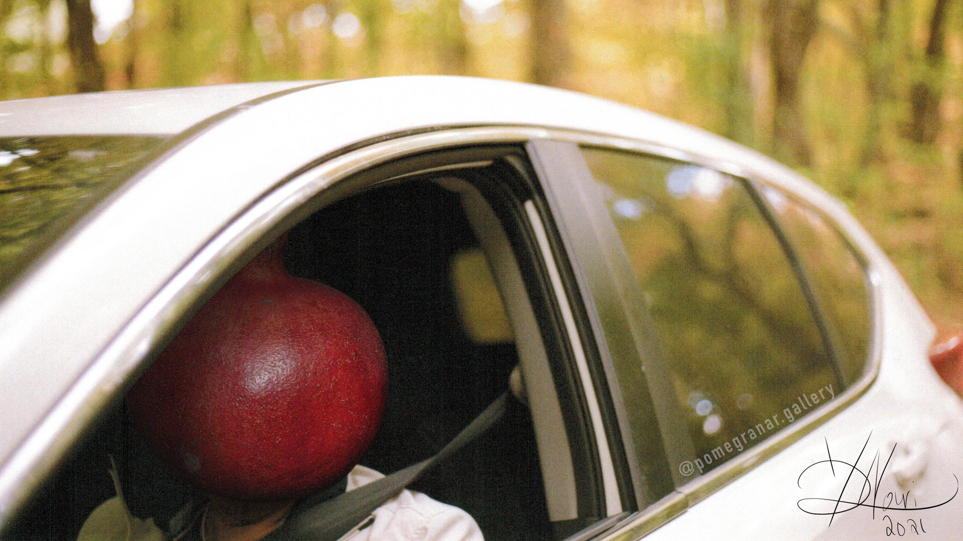 Things to do in Toronto this March   Pomegranar virtual art gallery — Baba Car