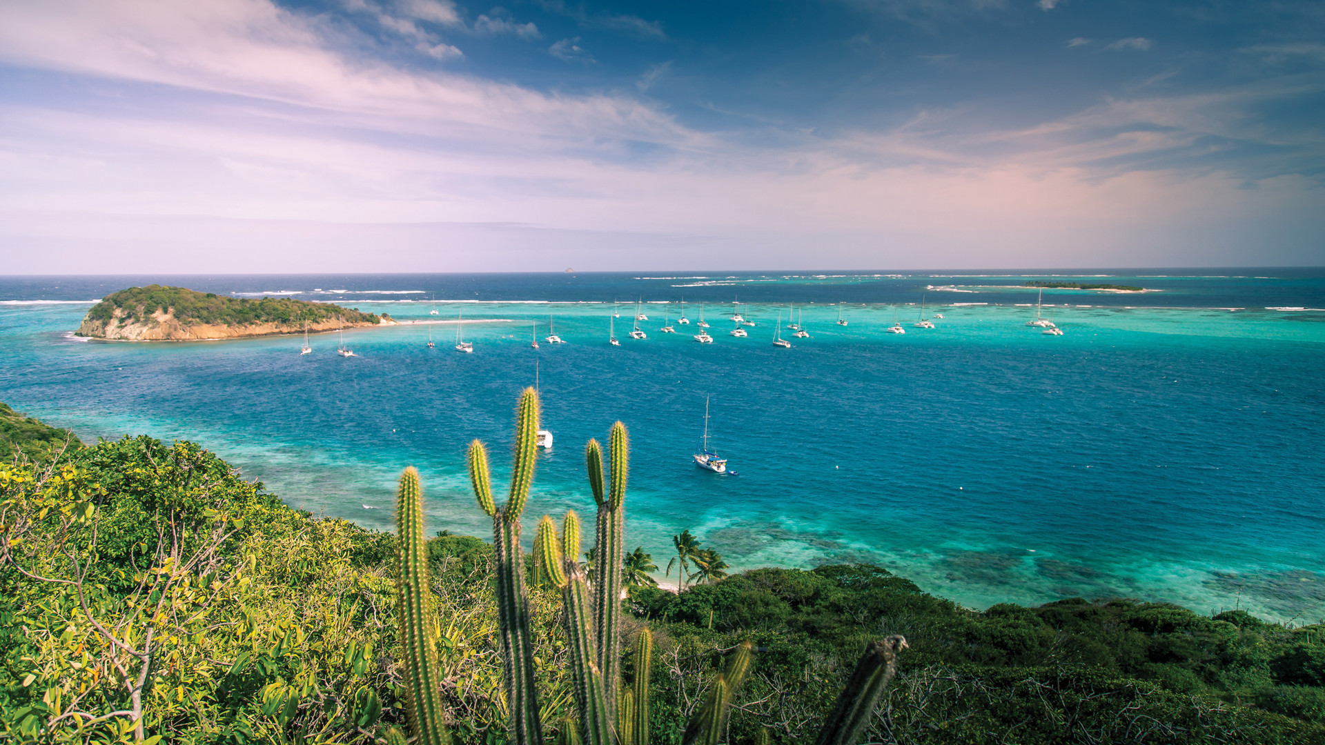Blue seas and cactus in St Vincent & the Grenadines