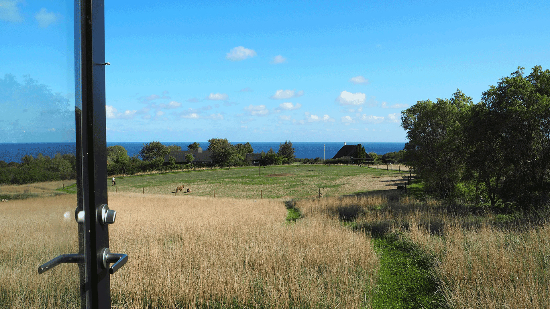 Morning view from the cabin at Bornholm Surf Farm