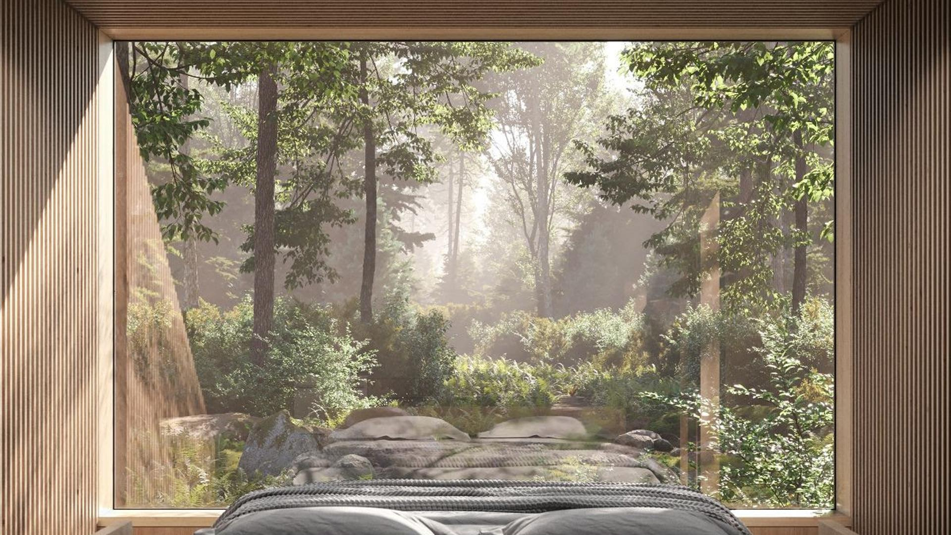Arcana self-directed nature retreat opens in Ontario | Inside an Arcana cabin