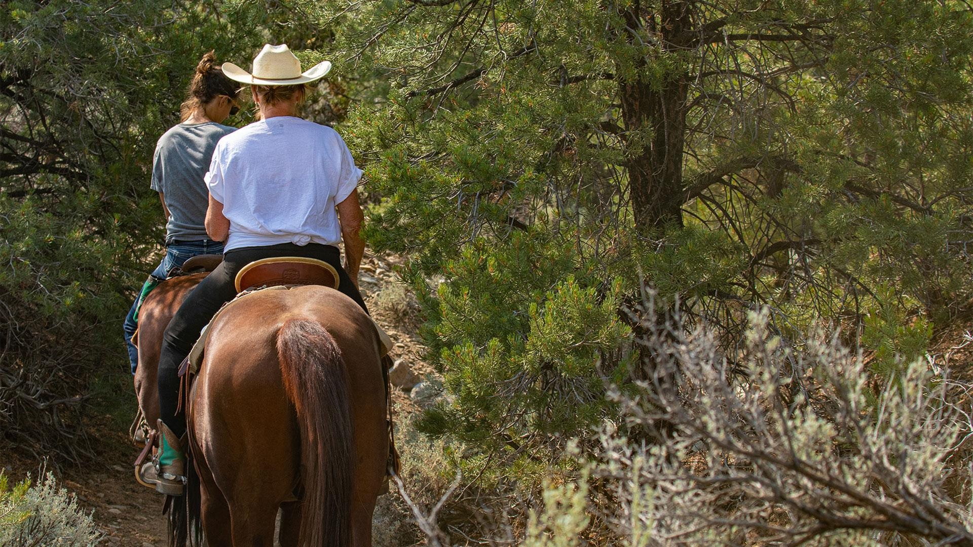 The top things to do in Taos, New Mexico   Horseback riding through Taos