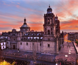 Winging It: Mexico City