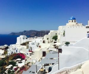 Tourists urged to stop riding donkeys up Santorini's steep cliffs