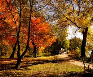 Fall road trip to Stratford, Ontario