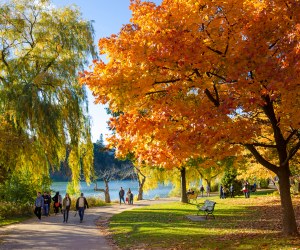 The best walking trails in Toronto | High Park in the fall