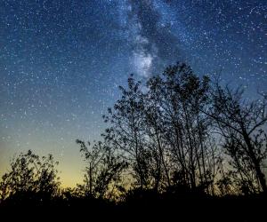 Toronto day trips | Stargazing in Muskoka | Shutterstock/Ping Ye