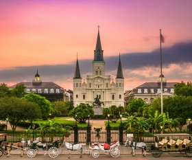 Winging It: New Orleans, LA