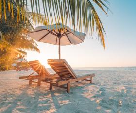international travel reopens