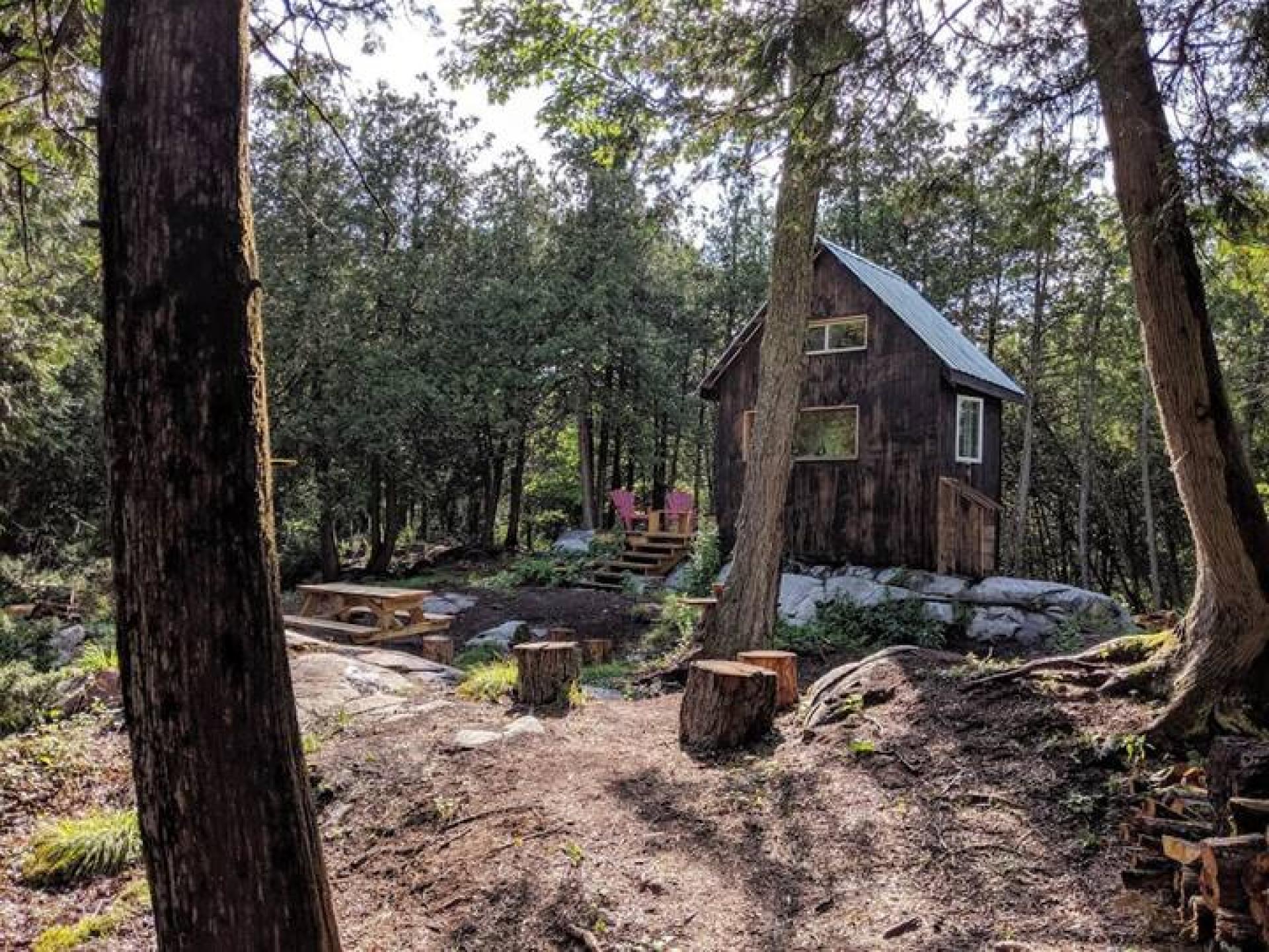 Ontario's coolest cabins to rent | Black Bird Cabin