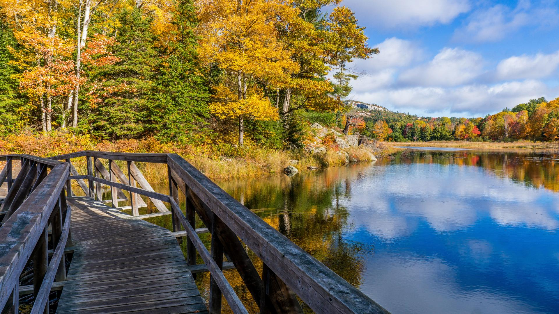 Ontario's best hikes | A boardwalk in Killarney National Park
