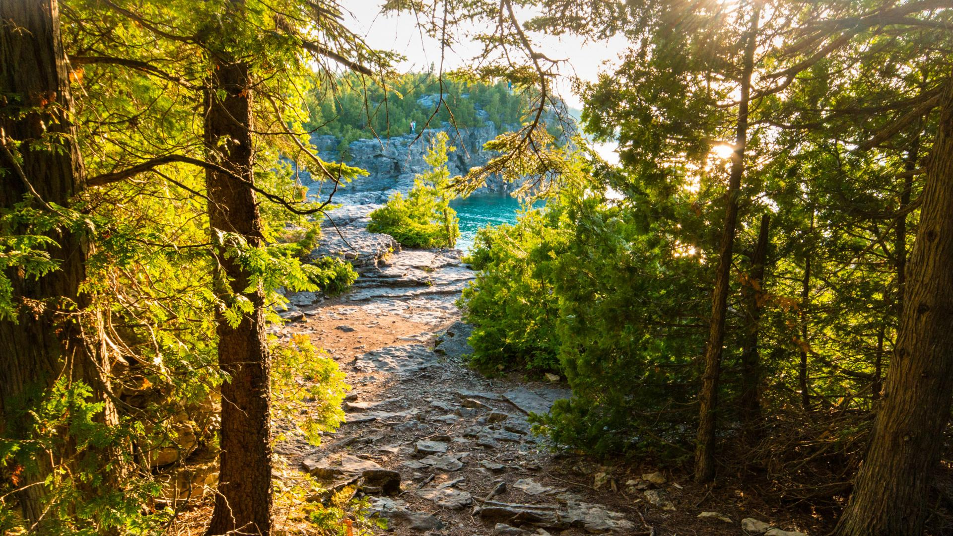 Ontario's best hikes | The Bruce Trail