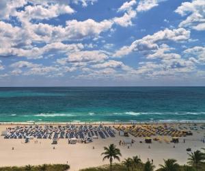 Miami Beach guide