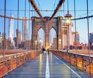 Winging It: Brooklyn, New York