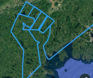 A Canadian pilot paid tribute to George Floyd by drawing a raised fist in the air